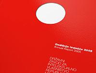 DZIV Annual Report 2005
