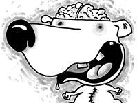 Braindog