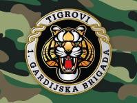 Hrvatski Domovinski rat - 1. gardijska brigada