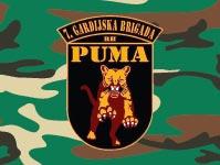Hrvatski Domovinski rat - 7. gardijska brigada