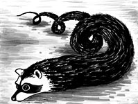 Raccoon snake